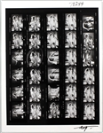 Stevie Nicks Original Neal Preston Signed Over-Sized Contact Sheet Giclée Print